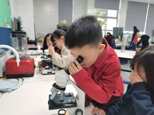 Grade 1 visits Secondary Biology for their Unit of Inquiry